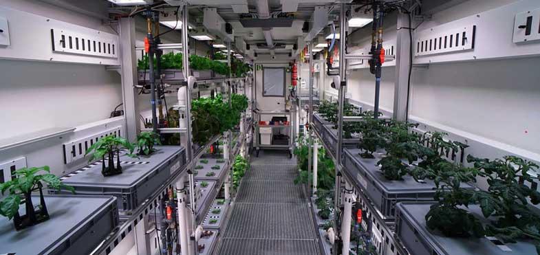 antarctica-greenhouse
